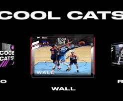 Cool Cats NBA