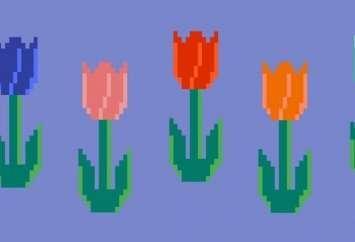 Crypto Tulips