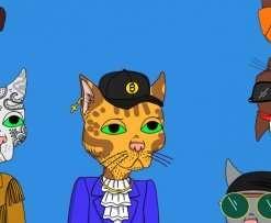 Gutter Cats